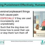 Facts About Punishment 13