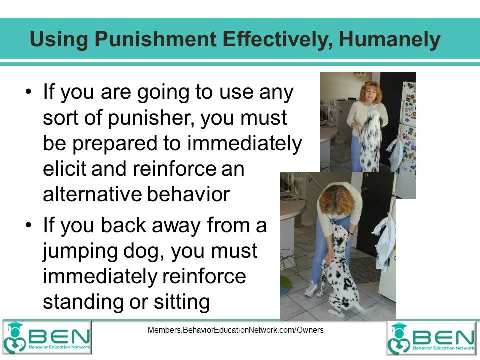 Facts About Punishment 10