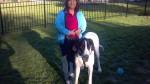 Trusting Paws Dog Training, LLC