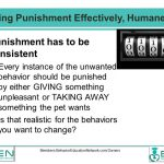 Facts About Punishment 8